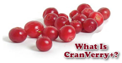 CranVerry + ingredients