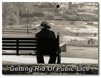 Getting Rid  Of Pubic Lice