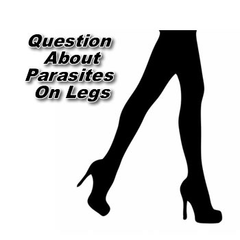 Is This A Parasite Affecting My Legs?