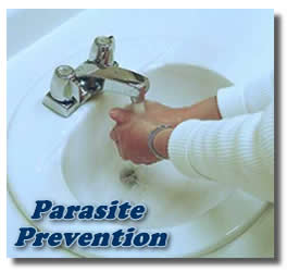preventing parasites in humans