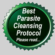 best parasite cleanse