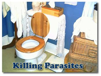 Kill Parasites With Natural Herbal Remedies