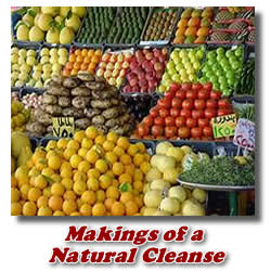 natural colon cleanse ingredients