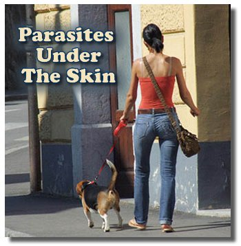 Dealing With Parasites Under The Skin